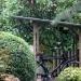 woody-woody_fietsenhok_van_tuinhout_&_opticolor_golfplaat_01